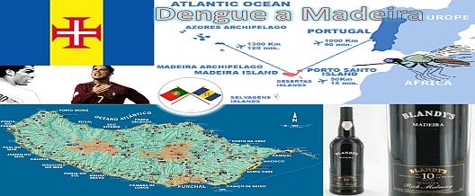 Dengue a Madeira