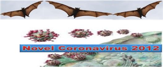 SARI Corona Bat Bug