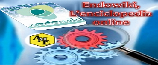 Endowiki, L'enciclopedia online