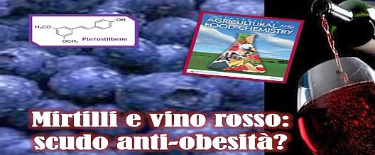 Mirtilli e vino rosso: anche anti-obesità?