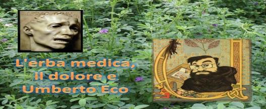 L'erba medica, il dolore e Umberto Eco
