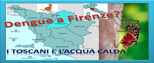 Dengue a Firenze?