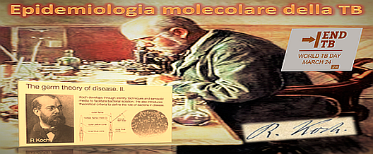 Epidemiologia molecolare della TB