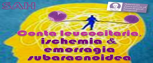 Conta leucocitaria, ischemia e SAH