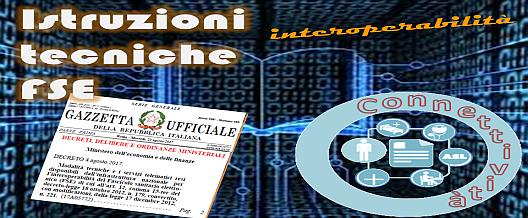"""""""Istruzioni tecniche"""" del FSE"""