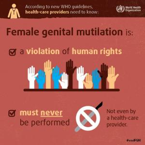 MGF testo