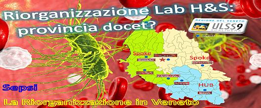 Riorganizzazione Lab H&S: provincia docet?