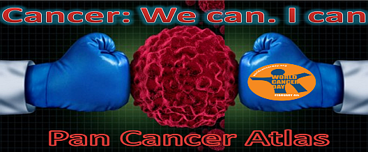 Cancer: We can. I Can