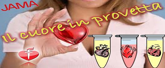 Il cuore in provetta