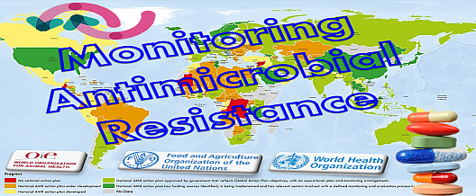 Monitoring Antimicrobial Resistance