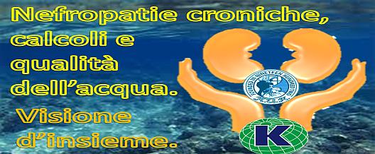 Nefropatie croniche, calcoli e qualità dell'acqua. Visione d'insieme