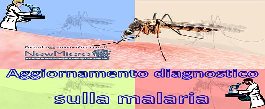 Aggiornamento diagnostico sulla  Malaria