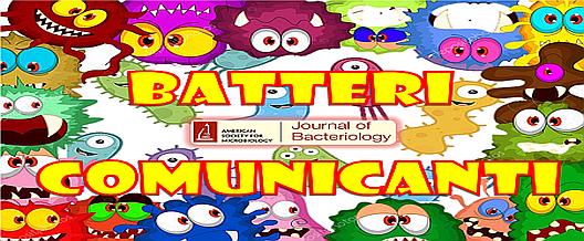 Batteri Comunicanti