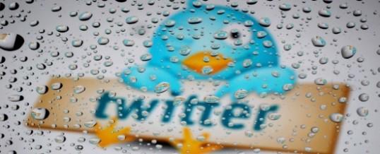Semplice Manuale di Twitter