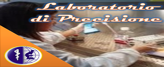 Laboratorio di Precisione