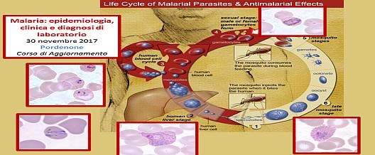 Malaria: diagnosi di qualità