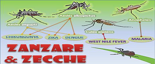 Zanzare e Zecche