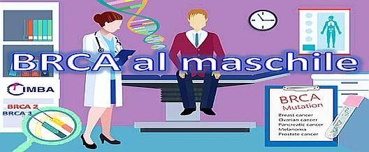BRCA al maschile