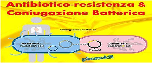 Antibiotico-resistenza & Coniugazione Batterica